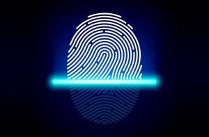 Qualcomm Fingerprint Sensors