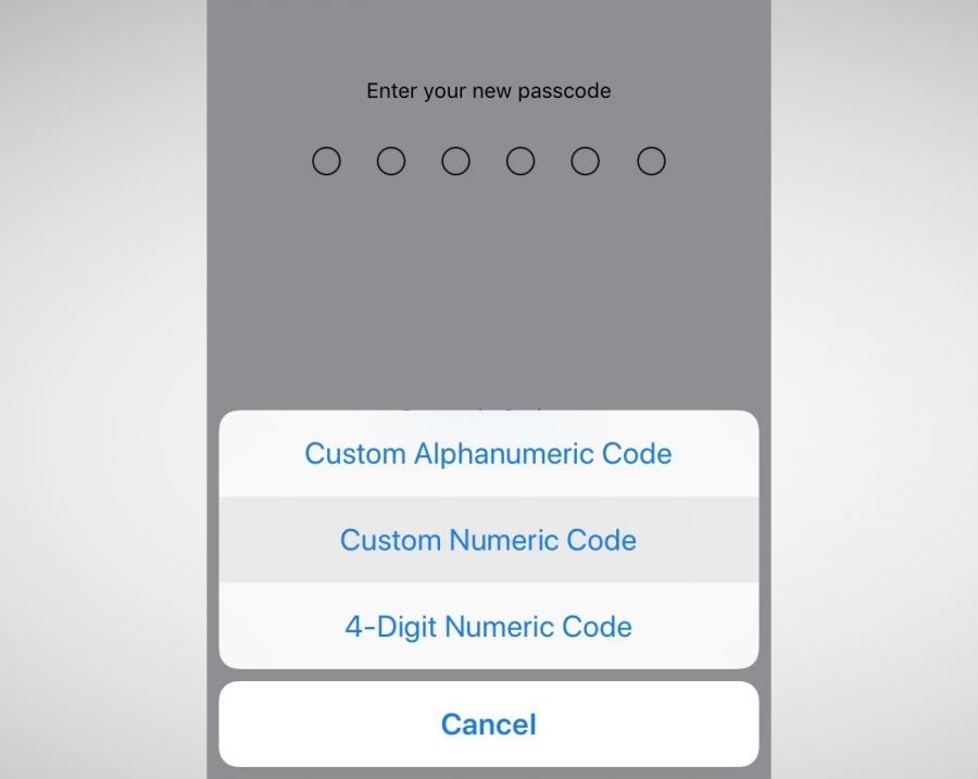 Пароли в iOS 12