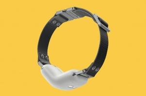 RAWR Smart Collar