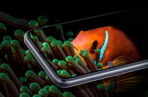 Samsung Galaxy F52 5G спереди